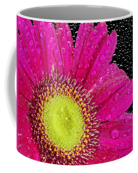 Flower Coffee Mug featuring the photograph Flower by FL collection