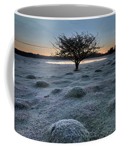 Balmer Lawn Coffee Mug featuring the photograph New Forest - England by Joana Kruse