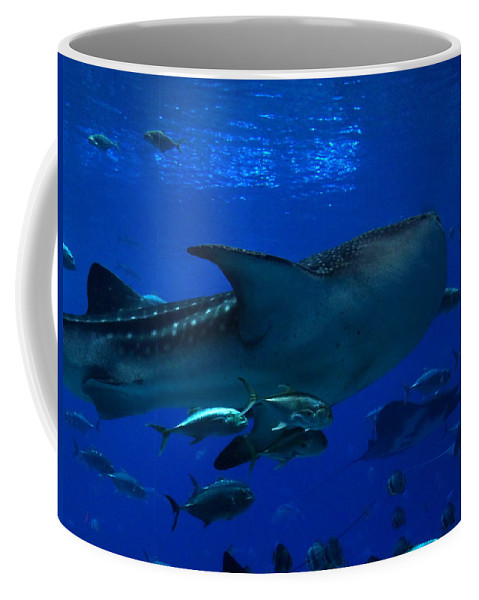 Sharks Coffee Mug featuring the photograph 1701 by Onyx Armstrong