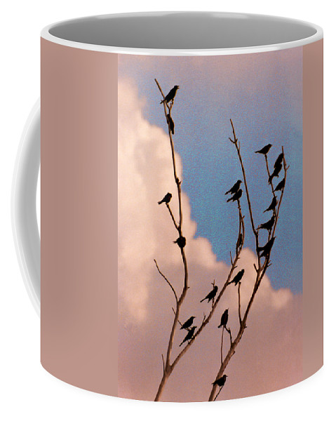 Birds Coffee Mug featuring the photograph 19 Blackbirds by Steve Karol