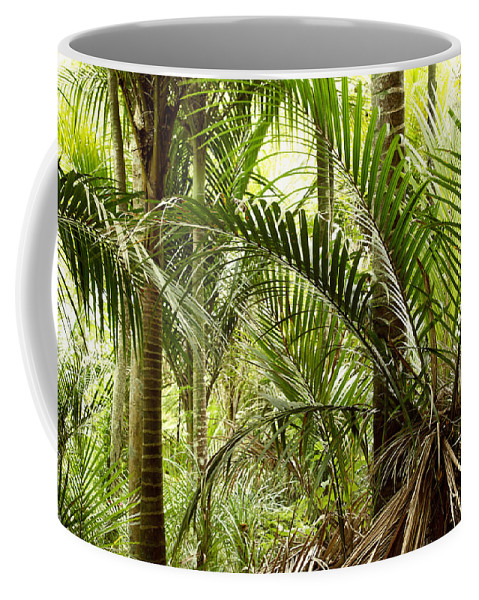 Rain Forest Coffee Mug featuring the photograph Jungle 94 by Les Cunliffe