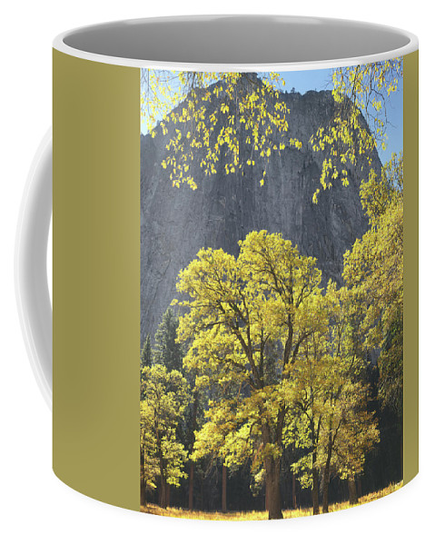 1m6610 Coffee Mug featuring the photograph 1m6610 Middle Cathedral Rock In Autumn by Ed Cooper Photography