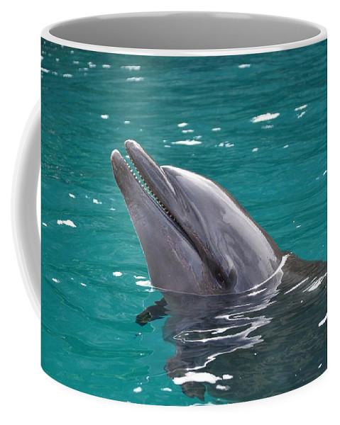 Fish Coffee Mug featuring the photograph Dolphin by FL collection