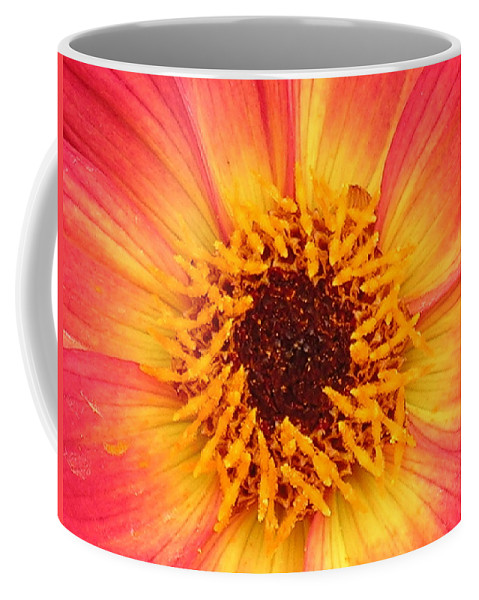 Flower Coffee Mug featuring the photograph Flower by Diane Greco-Lesser