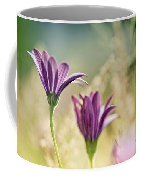 Flower Coffee Mug featuring the photograph Flower On Summer Meadow by Nailia Schwarz