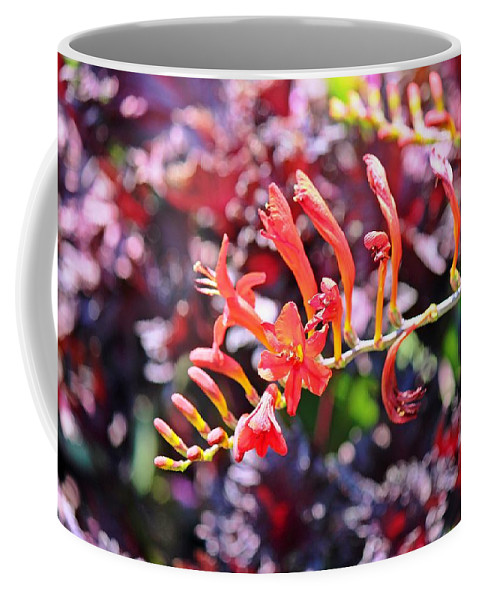 Flowers Coffee Mug featuring the photograph God's Handiwork by Jimmie Blacker