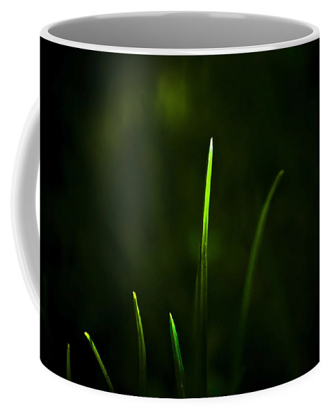 Grass Coffee Mug featuring the photograph Grass by Svetlana Sewell
