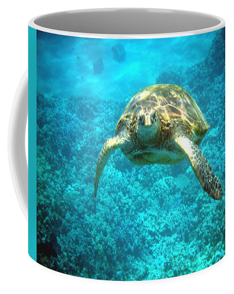 Sea Turtle Coffee Mug featuring the photograph Here's Looking At You by Angie Hamlin