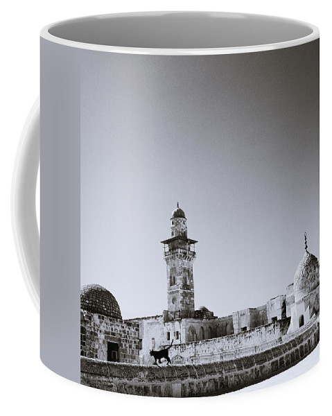 Cat Coffee Mug featuring the photograph Old Jerusalem by Shaun Higson