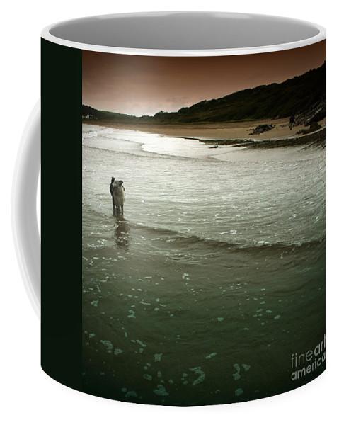 Dog Coffee Mug featuring the photograph Pembrokeshire by Angel Ciesniarska