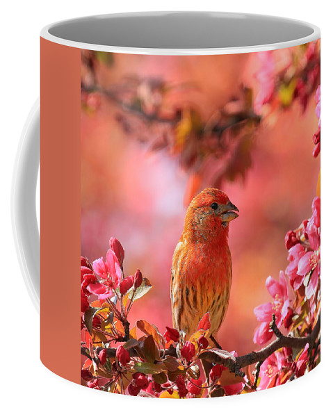 Bird Coffee Mug featuring the photograph Pretty In Pink by John Absher