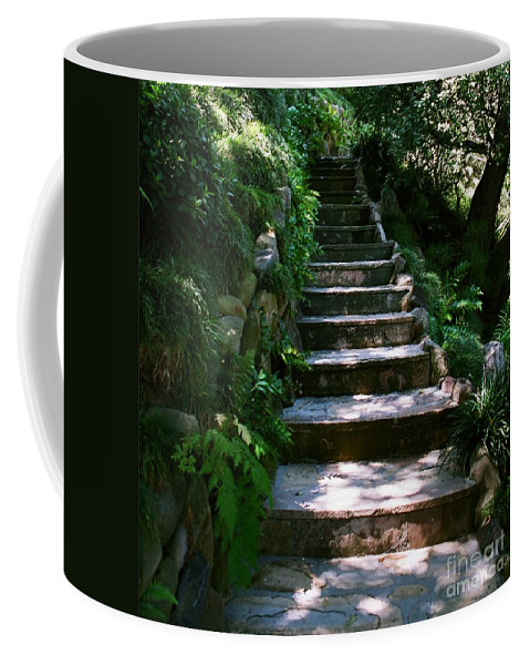 Nature Coffee Mug featuring the photograph Stone Steps by Dean Triolo
