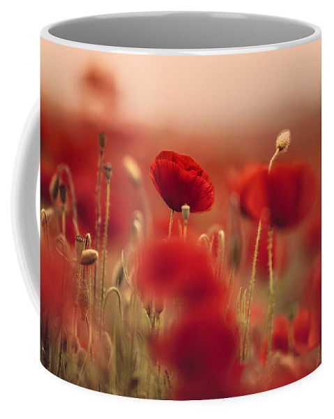 Poppy Coffee Mug featuring the photograph Summer Poppy Meadow by Nailia Schwarz
