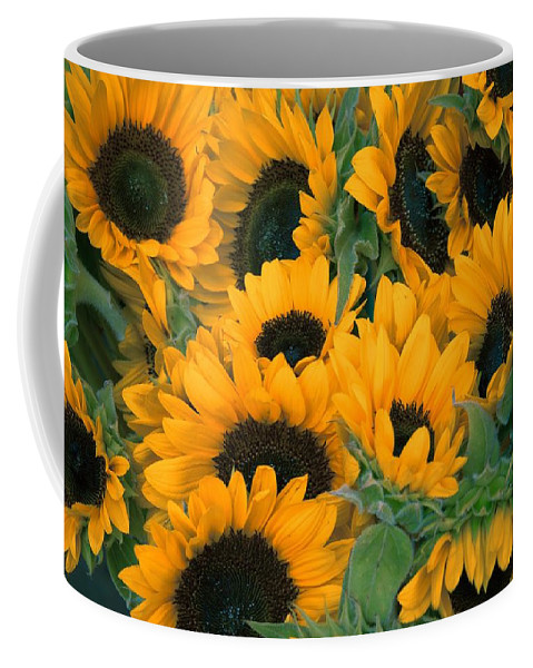 Flower Coffee Mug featuring the photograph Sunflowers by FL collection