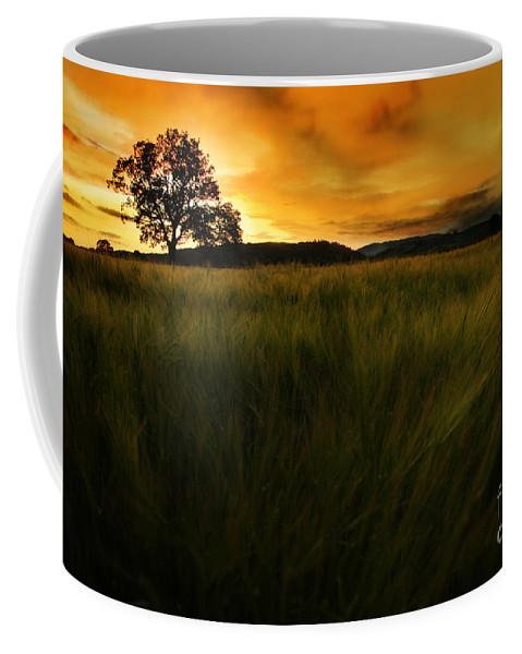Sunset Coffee Mug featuring the photograph The Fire On The Sky by Angel Ciesniarska