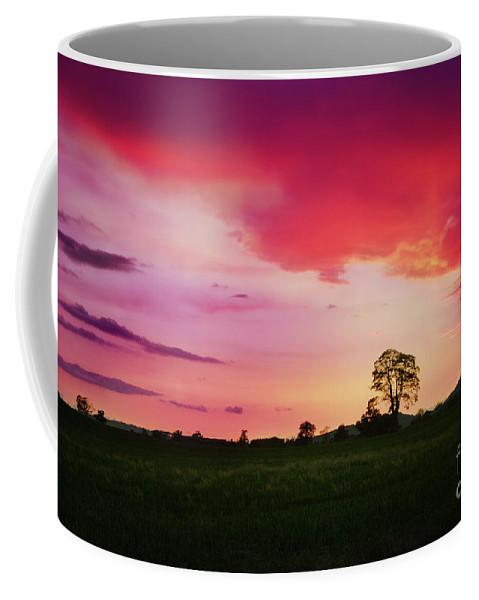 Sunset Coffee Mug featuring the photograph The Holy Tree by Angel Ciesniarska