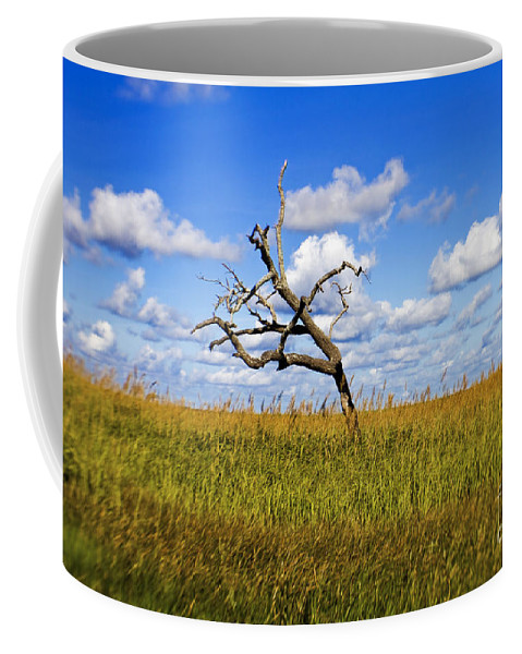 Tree Coffee Mug featuring the photograph The Last One Standing by Scott Pellegrin