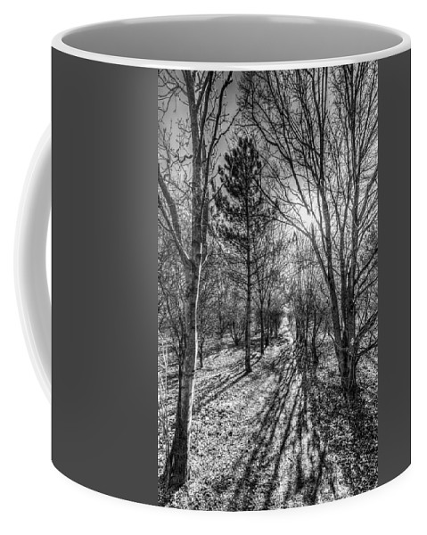 Watercolor Coffee Mug featuring the photograph The Peaceful Forest by David Pyatt