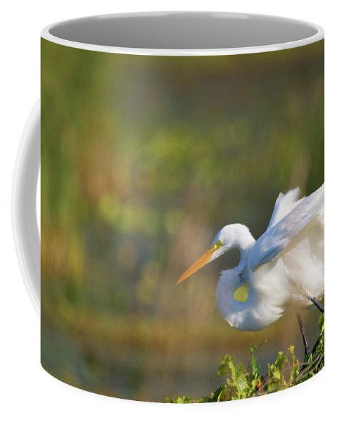 Great White Egret Coffee Mug featuring the photograph The Stretch by Linda Kerkau