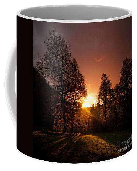 Shire Coffee Mug featuring the photograph The Sunset by Angel Ciesniarska
