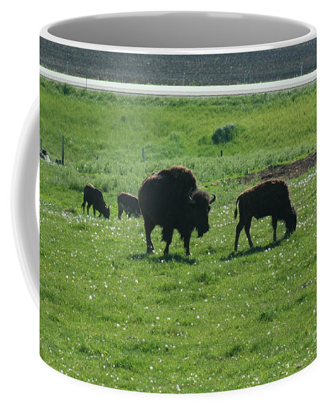 Wisconsin Coffee Mug featuring the photograph Wisconsin Buffalo by Tommy Anderson