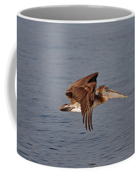 Pelican Flying Coffee Mug featuring the photograph 20- Pelican by Joseph Keane