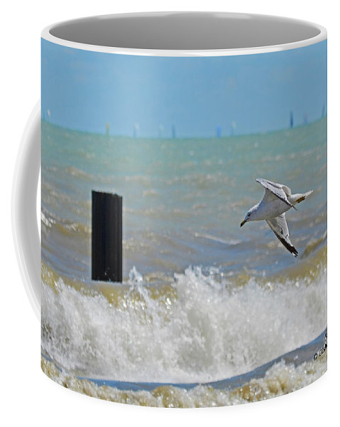 Chicago Coffee Mug featuring the photograph 2012 08 11 Chicago Dsc_1571 by Mark Olshefski