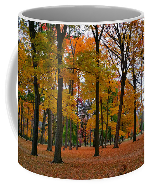20151024_173131-faa-picfair-500px.jpg Coffee Mug featuring the photograph 2015 Fall Colors - Washington Crossing State Park-1 by Srinivasan Venkatarajan