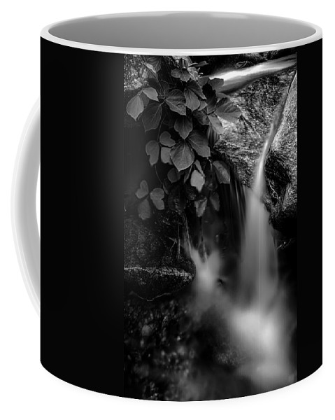 Abstract Coffee Mug featuring the photograph Broad River Flowing Through Wooded Forest by Alex Grichenko