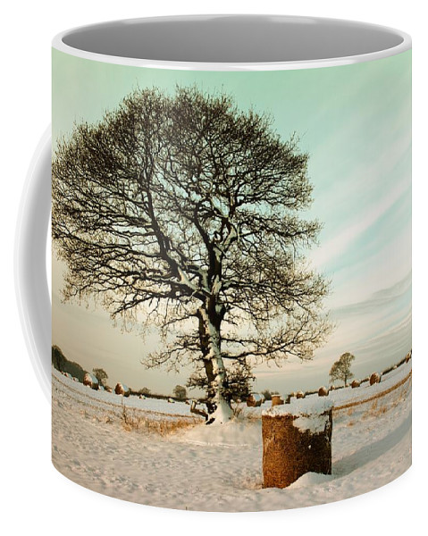 Winter Coffee Mug featuring the photograph Winter by FL collection