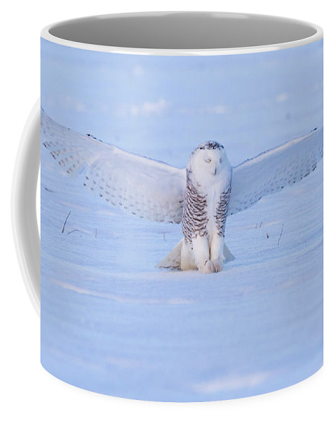 Owl Coffee Mug featuring the photograph Snowy Owl by Dee Carpenter