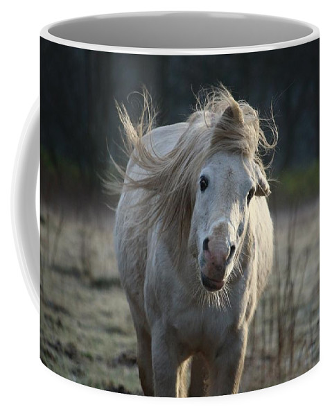 Horse Horses Coffee Mug featuring the photograph Horse by FL Collection