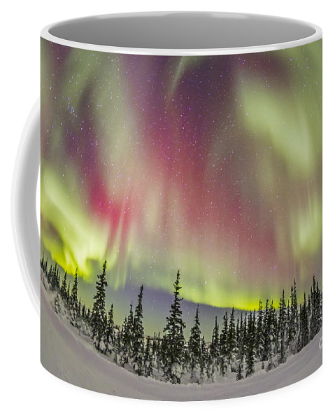 Aurora Coffee Mug featuring the photograph Aurora Borealis Over Churchill by Alan Dyer