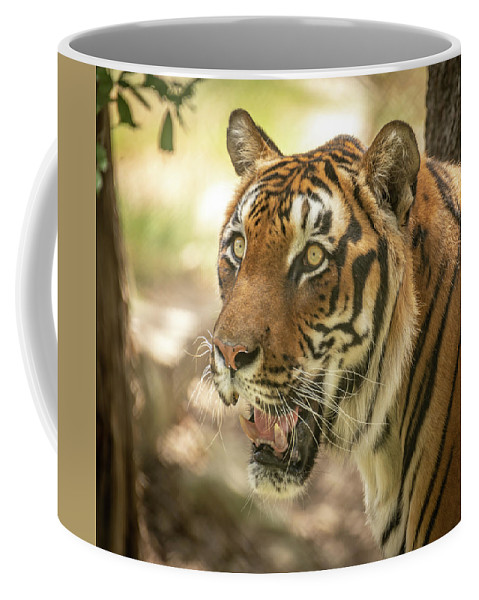 Bengaltiger Coffee Mug featuring the photograph Bengal Tiger by David Pine