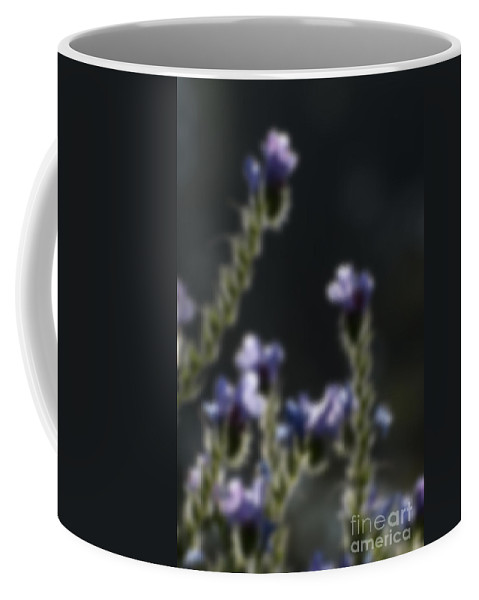 Violet Coffee Mug featuring the photograph Blurred Seasonal Flower With Dark Background by Rudra Narayan Mitra