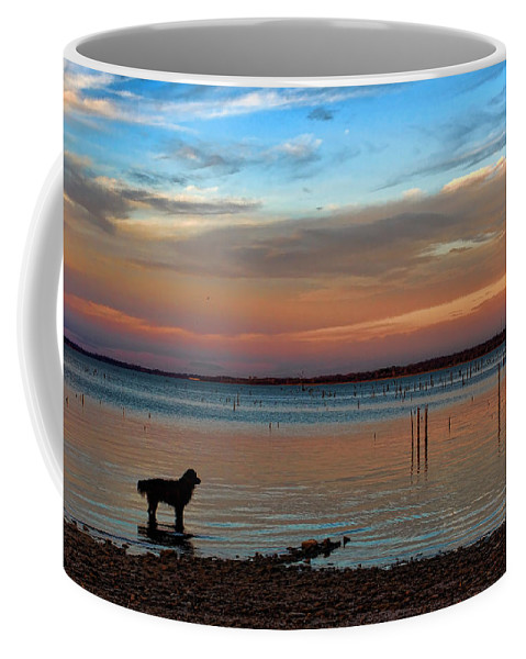 Sunset Coffee Mug featuring the photograph Contemplation by Carolyn Fletcher