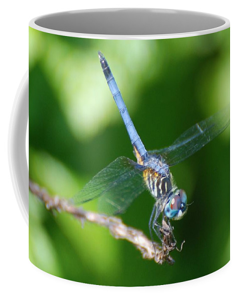 Dragonfly Coffee Mug featuring the photograph Dragon Fly by Rob Hans
