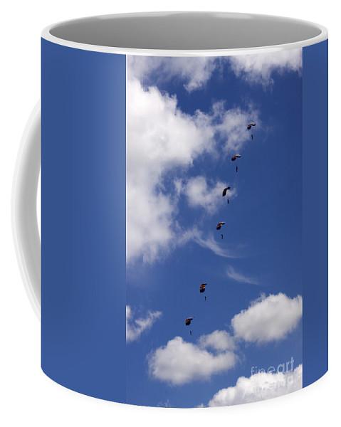 Raf Falcons Coffee Mug featuring the photograph Falling Down by Angel Ciesniarska
