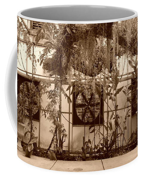 Vent Coffee Mug featuring the photograph 3 Fans And Vines by Rob Hans