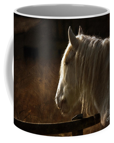 Horse Coffee Mug featuring the photograph Horse Portrait by Angel Ciesniarska