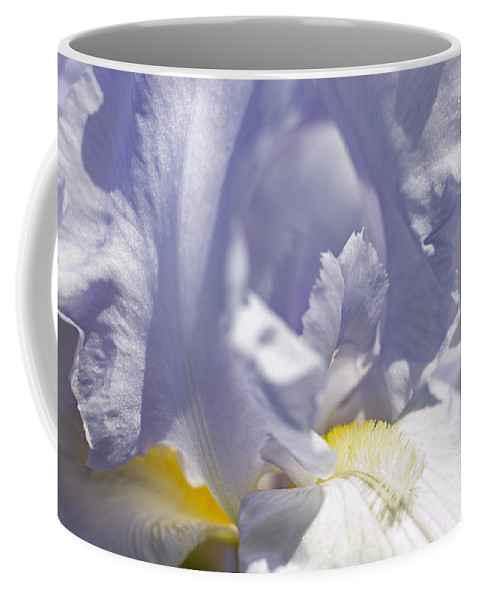 Genus Iris Coffee Mug featuring the photograph Iris Flowers by Tony Cordoza