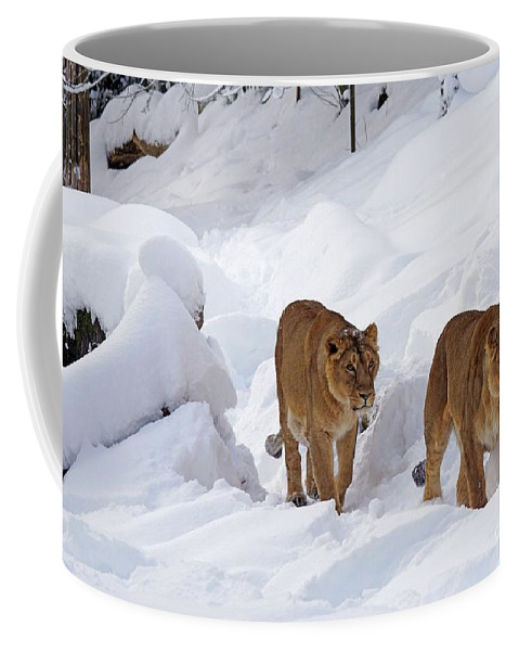 Lion Coffee Mug featuring the digital art Lions by FL collection