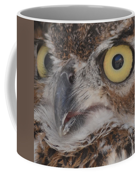 Close-up Coffee Mug featuring the photograph Great Horned Owl by Philip Ralley