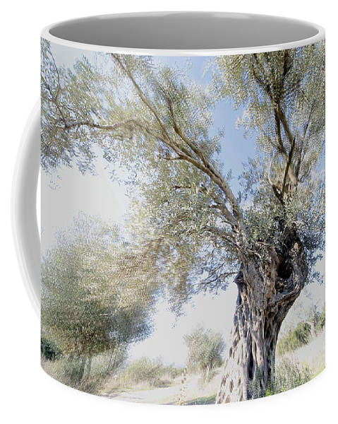 Olive Coffee Mug featuring the photograph Olive Trees by Vladi Alon