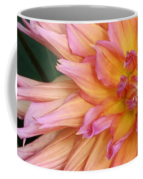 Nature Coffee Mug featuring the photograph Pink Explosion by Bruce Bley