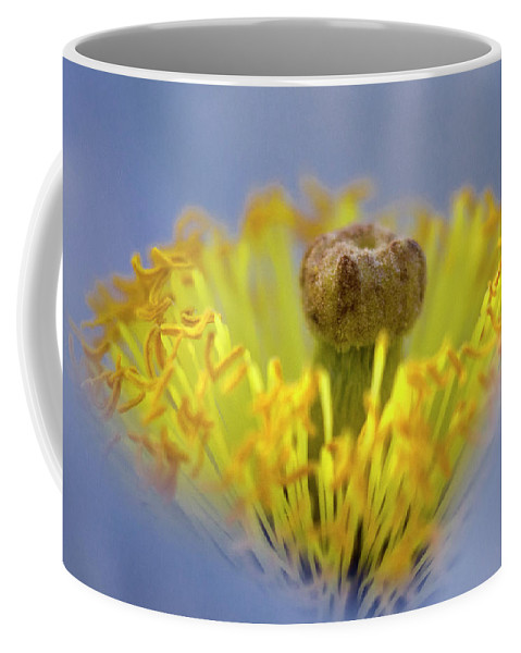 Real Coffee Mug featuring the photograph Royal Botanical Garden Of Madrid by Pablo Lopez