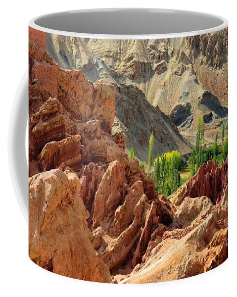 Ladakh Coffee Mug featuring the photograph Ruins Basgo Monastery Leh Ladakh Jammu And Kashmir India by Rudra Narayan Mitra