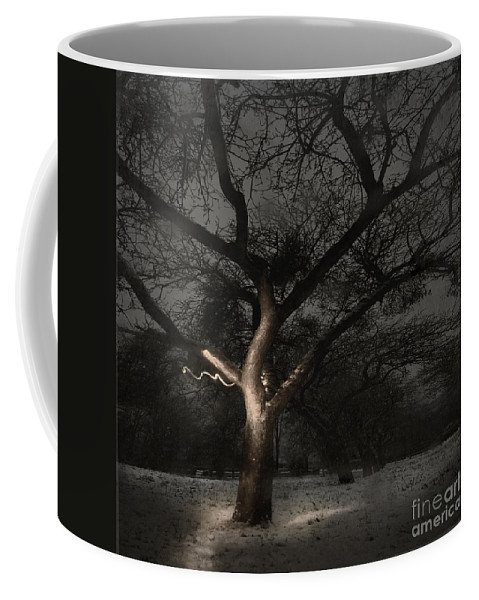 Apple Coffee Mug featuring the photograph The Winter Time by Angel Ciesniarska