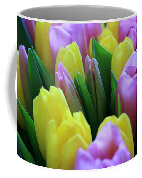 Tulips Coffee Mug featuring the photograph Tulips by Lali Kacharava
