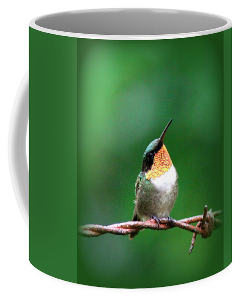 Ruby-throated Hummingbird Coffee Mug featuring the photograph 3531 - Ruby-throated Hummingbird by Travis Truelove